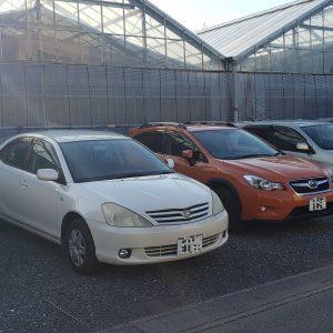 白鳥駐車場の写真